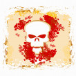 Skull and grunge vector background — Stock Photo #9774614