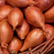Onion in a basket on a market — Stock Photo