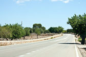 Road in balearic landscape on spanish island mallorca — Stock Photo