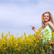 Royalty-Free Stock Photo: Beautiful blonde girl in a field in summer