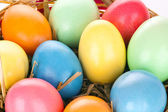 Eastern eggs in different colours in a basket with a rabbit — Stock Photo
