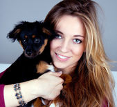 Young beatiful girl with a cute little dog having fun — Stock Photo
