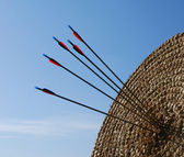 Blank archery target with arrows in the centre — Stock Photo