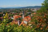 Ljubljana in Slovenia — Stock Photo