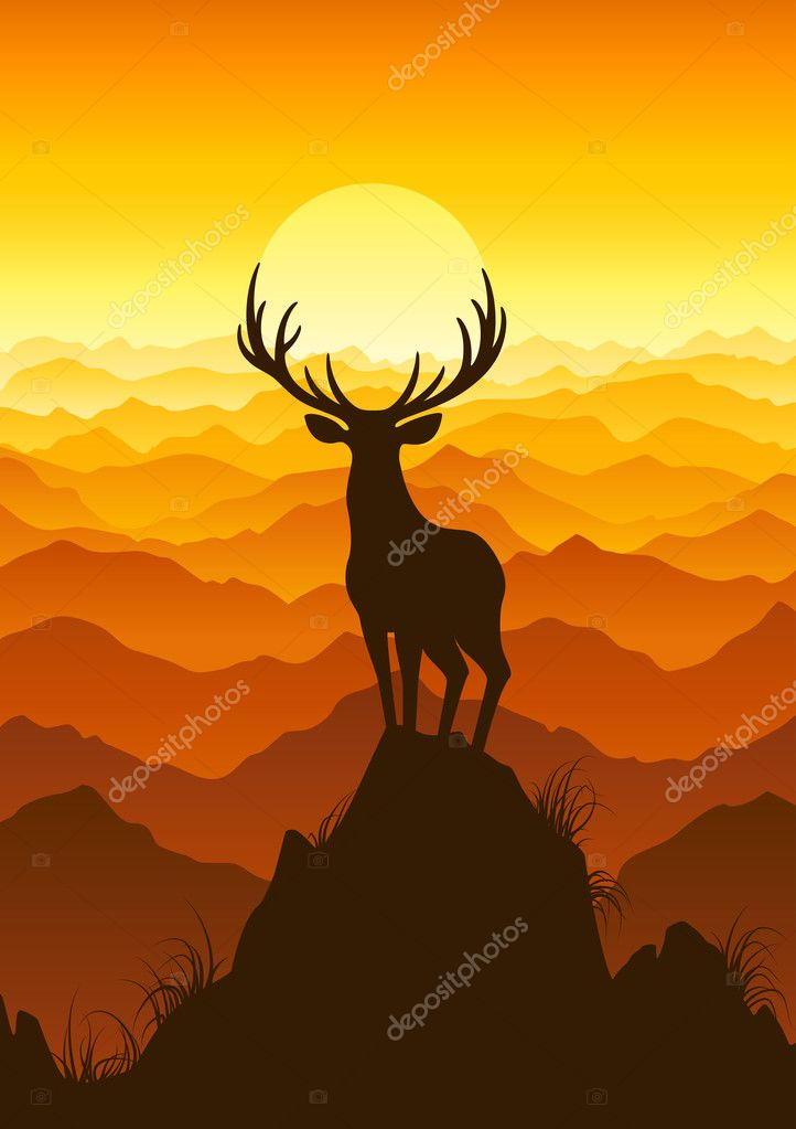 Deer at sunset. Vector illustration.  Stock Vector #9038412