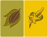 Cocoa bean and vanilla flower with pods. Vector illustration. — Stock Vector