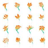 Tropical flowers. Vector logo template set. — Stock Vector
