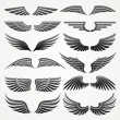 Wings. Elements for design. Vector illustration. — Stok Vektör