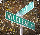 Wildleaf caddesi ve koyu kavşağı — Stok fotoğraf