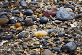 Rocks and Pebbles — Stockfoto
