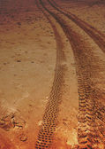 Off Road Beach Tracks — Stock Photo
