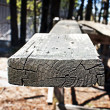 Stock Photo: Sawn Lumber