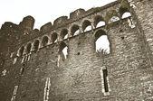 Eski kale duvarı — Stok fotoğraf