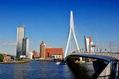 Rotterdam by the Bridge — Stock Photo