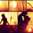 Sunset collage. — Stock Photo