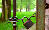 Padlock on the gate — 图库照片