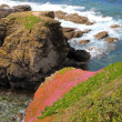 The rocky outcrop reaching into the sea on the Lizard peninsula — Stock Photo