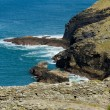 A view from Tintagel Castle in Cornwall on a sunny day — Foto Stock