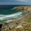 A view from the South-West coastal path in Treknow, Cornwall — Stok fotoğraf