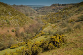 A view of the valley from Meldon Viaduct in Devon — Stock Photo