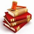 Stock Photo: Law Book