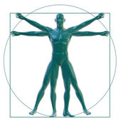 Vitruvian man on white — Stock Photo