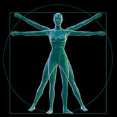 Vitruvian woman on black — Stock Photo
