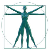 Vitruvian woman on white — Stock Photo