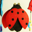 Lucky ladybug - Stock Photo