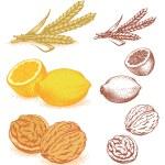������, ������: Grain lemons walnuts