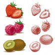 Strawberry, raspberry, kiwi. Vector illustration. - Stock Vector