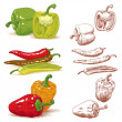 Royalty-Free Stock Vector Image: Peppers