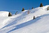 Fresh snow landscape and tracks — Stock Photo