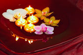 Floating candles and orchid — Stock Photo