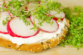 Vegetarian sandwich - detail — Stock Photo