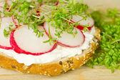 Vegetarian sandwich - detail — Stock Photo