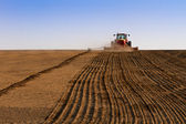 Agriculture tractor sowing seeds and cultivating field — Stock Photo