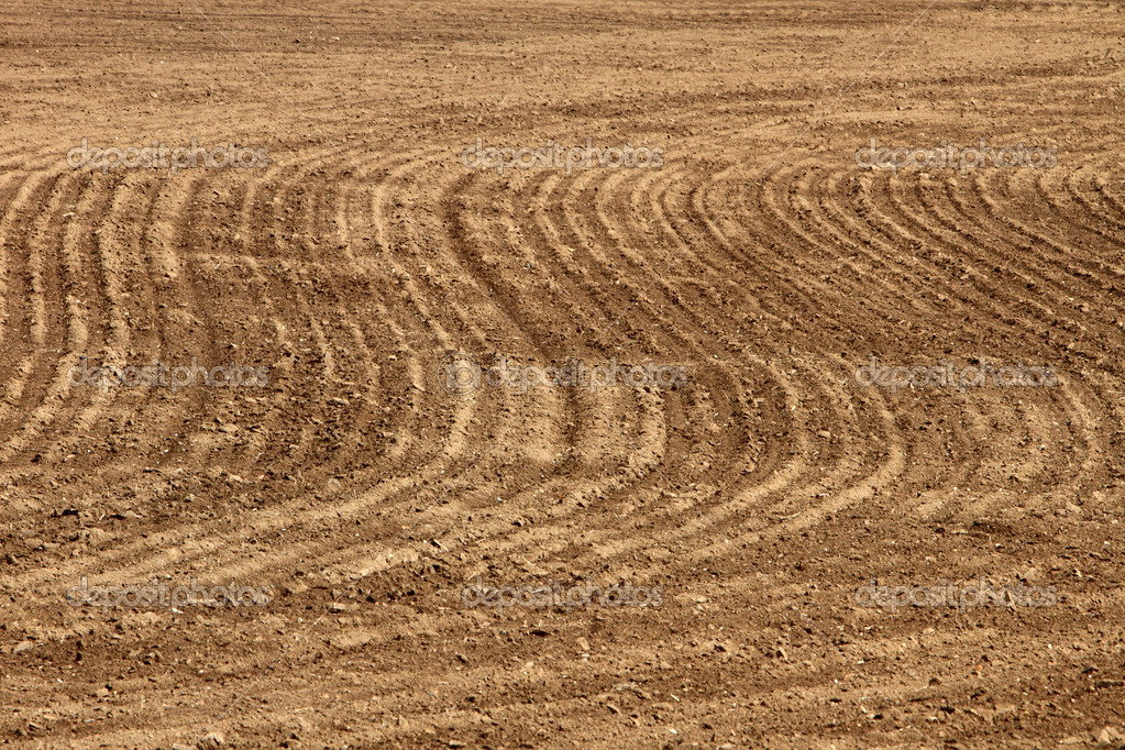 Plowed and cultivated brown field — Stock Photo #9607084