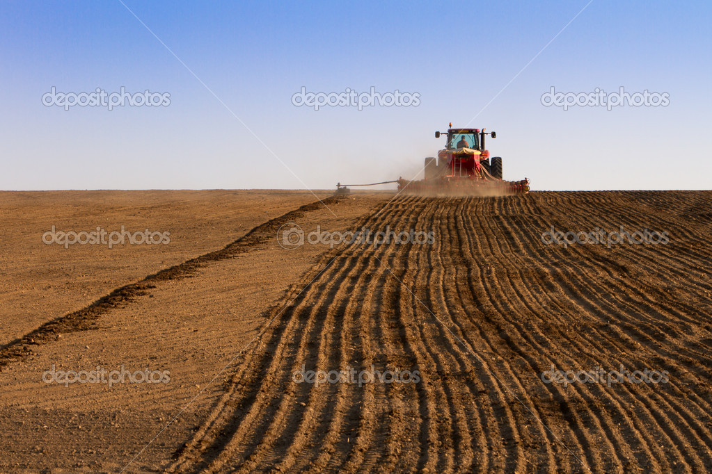 Agriculture tractor sowing seeds and cultivating field in late afternoon — Stock Photo #9607108