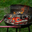 Fire in charcoal grill — Stock Photo #9148831