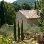 Provence house — Stock Photo #9149012