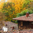 Stock Photo: Zheravnin autumn