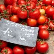 Ripe french tomatoes — Stockfoto