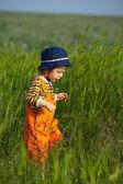 Little boy walking in a green grass at sunset light — Stock Photo