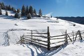Rhodope mountain winter — Stock Photo