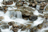 Mountain stream in Rila — Stock Photo