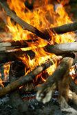 Ateş için odun yanan — Stok fotoğraf