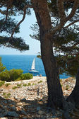 Calanque of Cassis, France — Stock Photo