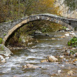 Stock Photo: Old stone bridge in mountains