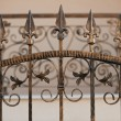 Ironwork fence — Stock Photo #9150167